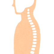 脊椎の正しい姿勢